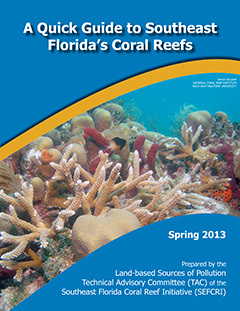 Guide to Florida Reefs