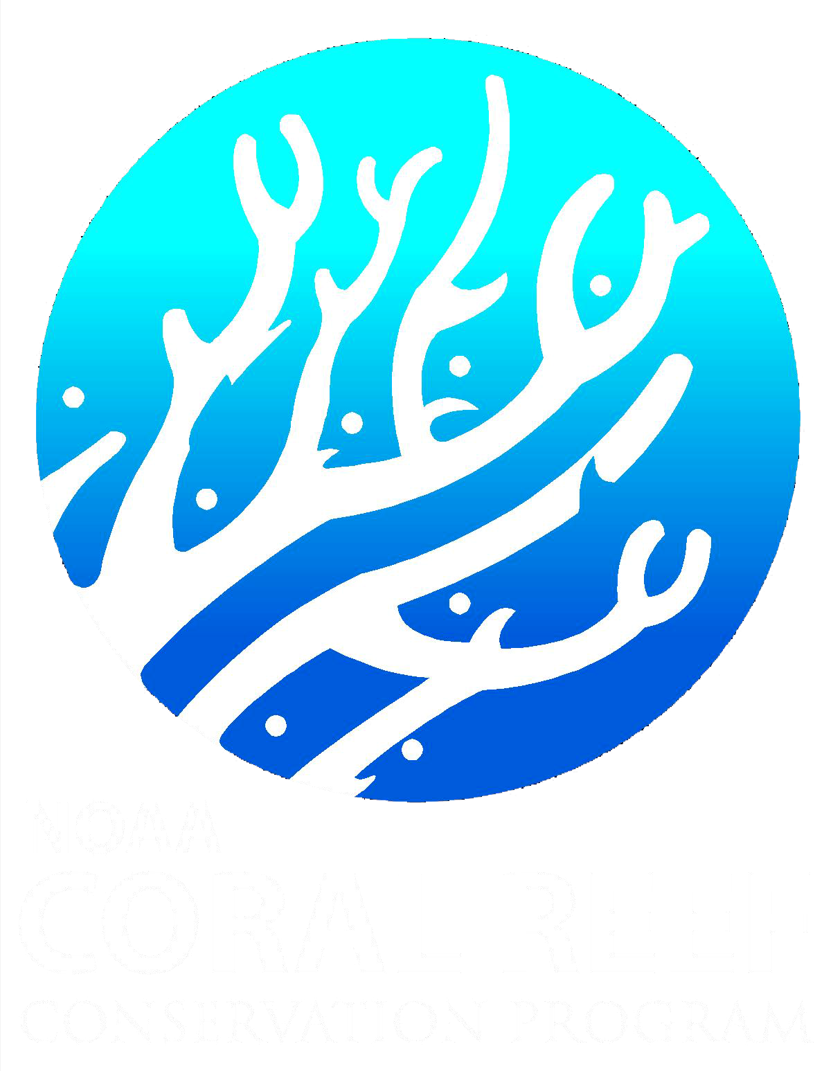 NOAA CoRIS - What are Coral Reefs