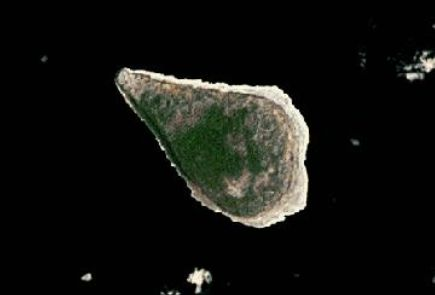 Satellite image of Navassa Island